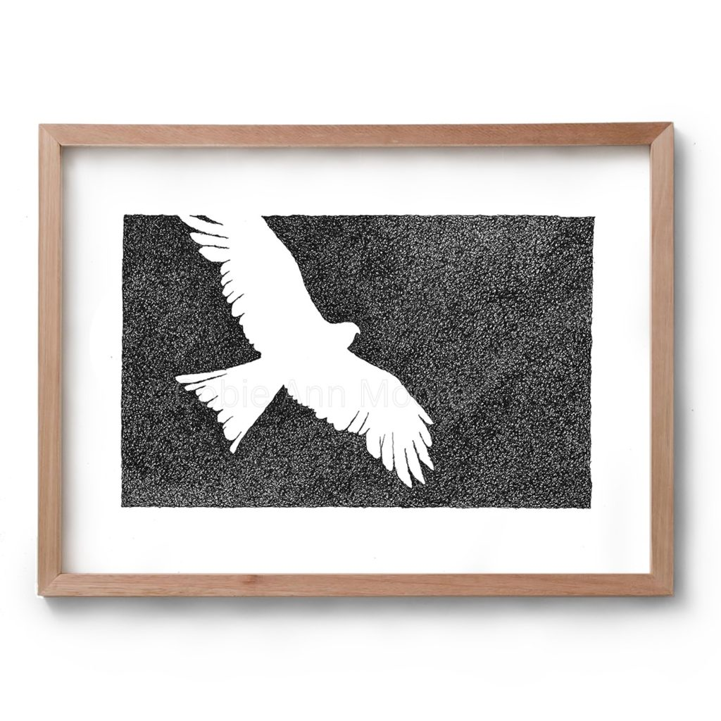 Black and white drawing by Cobie Ann Moore of an Eagle framed in a simple wooden frame